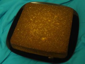 Butter Cream Vanilla Sponge Cake